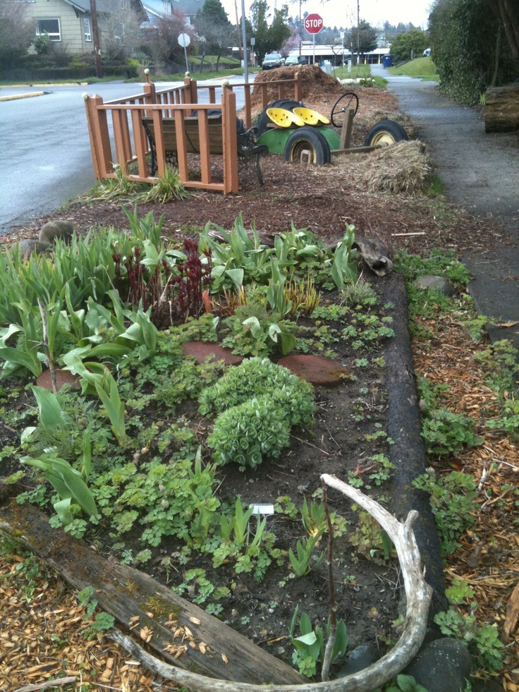 1000 images about curbside garden on pinterest front for Curbside garden designs
