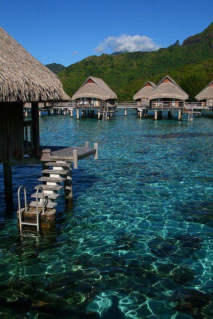 ✯ Over the water bungalows, Sofitel Moorea, Polynesia
