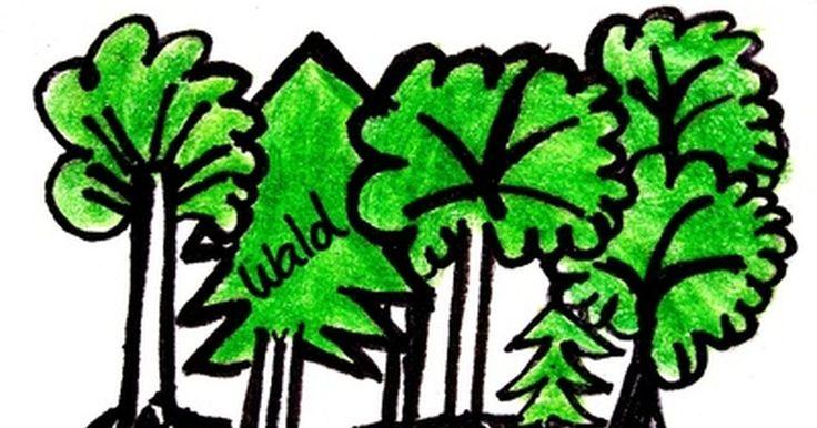 Como criar um desenho combinando árvores e letras. Você pode fazer um projeto de arte combinando árvores e palavras. Árvores têm formas muito ricas e complicadas que podem ser utilizadas para formar as letras das suas palavras. O segredo para desenhar uma árvore com sucesso é ter em mente a forma básica, que são galhos pequenos saindo dos maiores para cima e para fora, normalmente em formato ...