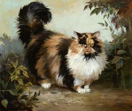 fluffy calico cat - photo #11