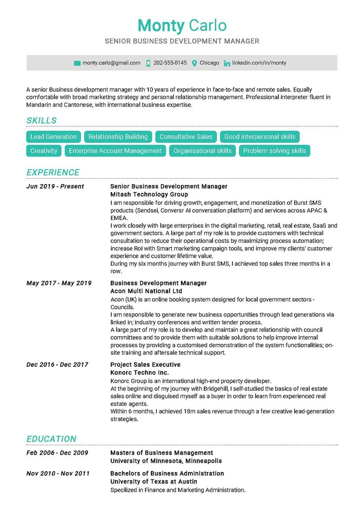Senior Business Development Manager Sample Resume in 2020