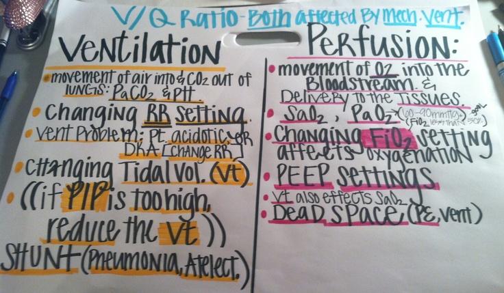 Ventilation / Perfusion