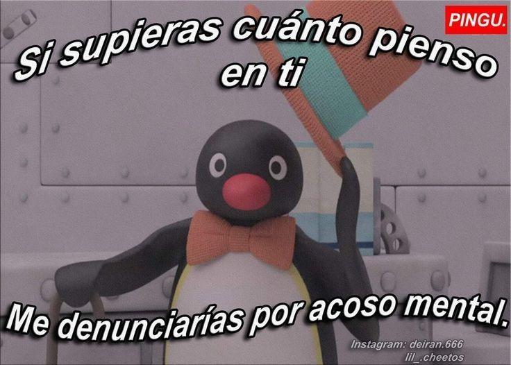 O1 Memes De Pingu Piropos Chistosos Frases Tontas Frases Sentimentales