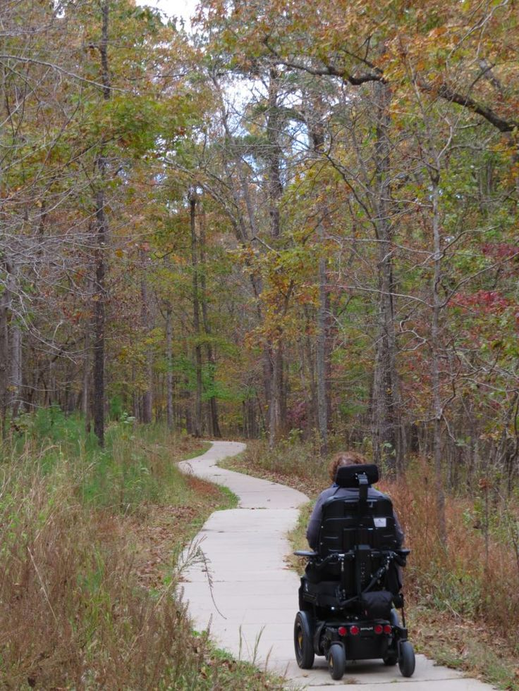 Wheelchair Accessible Northwest Arkansas: Where Art & Nature Abound