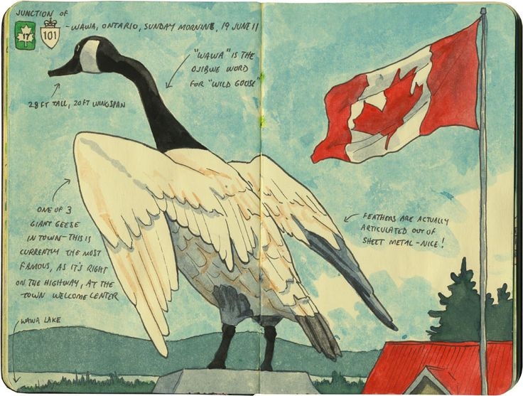 """""""Wawa"""" is the Ojibwe word for """"wild goose""""—a fact that Wawa, Ontario wants to make sure you don't forget."""