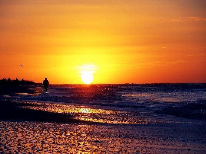 アメリカ・フロリダ州サニベル島にて。Sanibel Island in Florida, USA.