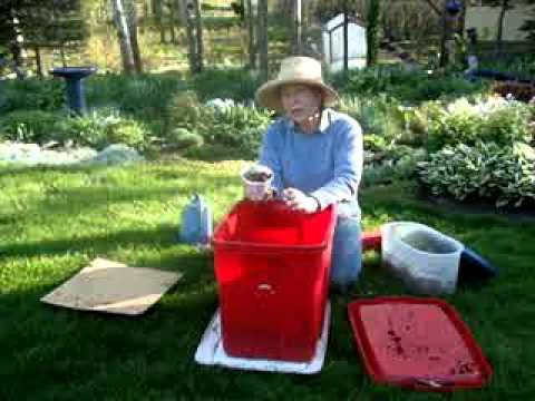 LARK'S RED WIGGLER WORM FARM - CHEAP & EASY  www.larksperennials.com