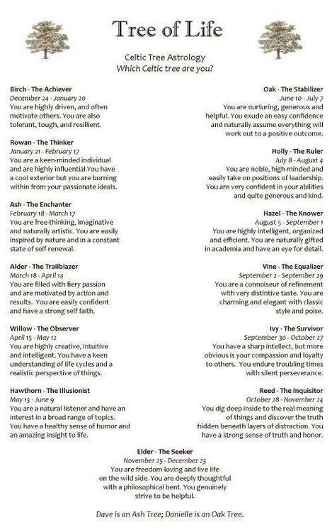Celtic Tree Astrology Im an Ash :) (via)