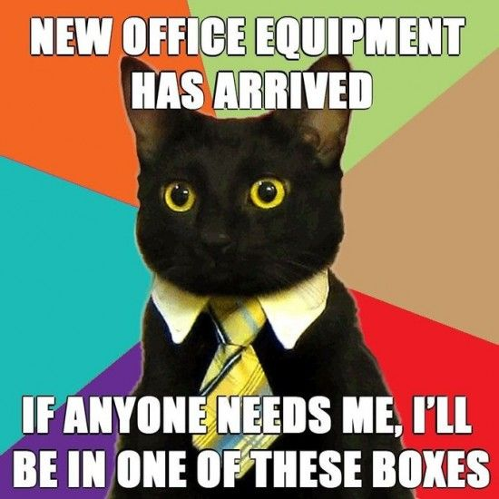 New office equipment has arrived. If anyone needs me, I'll be in one of these boxes.