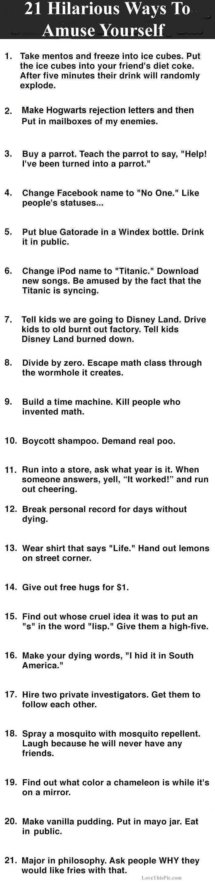 21 Hilarious Ways To Amuse Yourself funny jokes lol funny quote funny quotes funny sayings joke humor funny jokes amusing