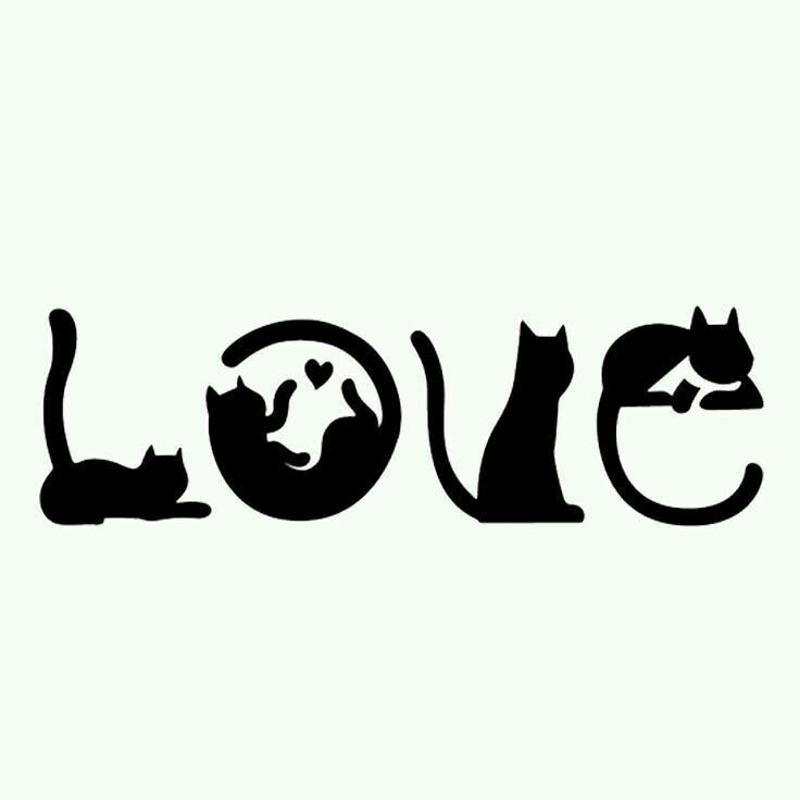 Don't care about the word I just care about the CATS!!!!