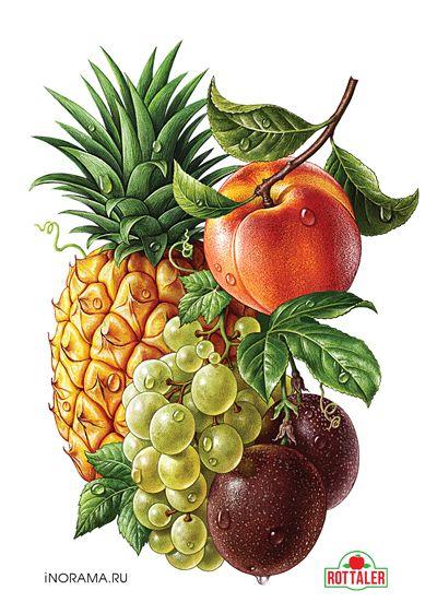 http://illustrators.ru/illustrations/690750_original.jpg