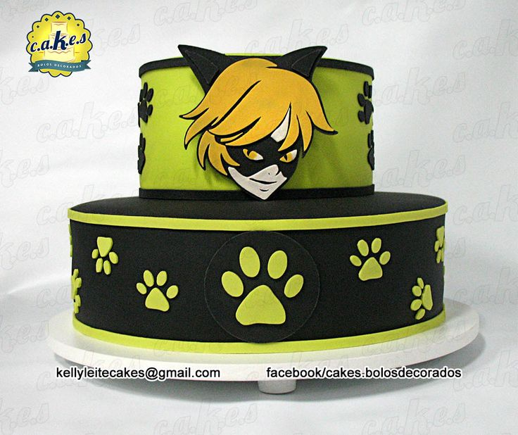Miraculous Cake - Cat Noir