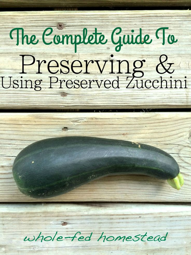 How to preserve zucchini- and more importantly, how to USE that frozen or dehydrated zucchini all year round!