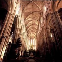 Basilique Sainte Marie Madeleine : Culture / Patrimoine à Saint Maximin la Sainte Baume