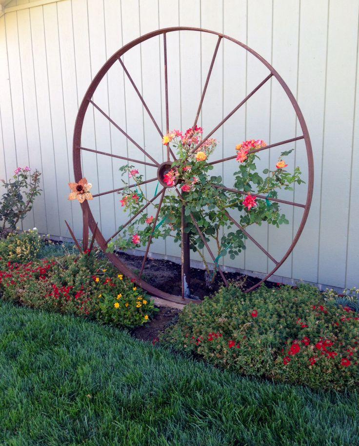 Wagon wheel rose trellis.  Garden ideas.