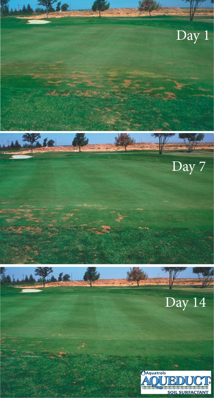 Aqueduct can provide rapid relief for localized dry spots.