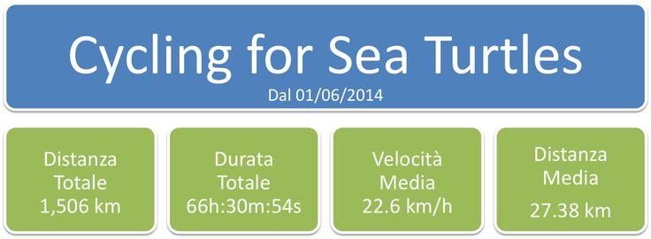 Red Sea Turtle Project: MARCO GIOVANNINI - PADI CD 619790: 1506 Km #perLeT...