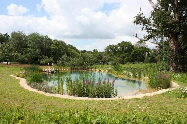 Les 1555 meilleures images propos de piscine naturelle for Piscine naturelle a debordement