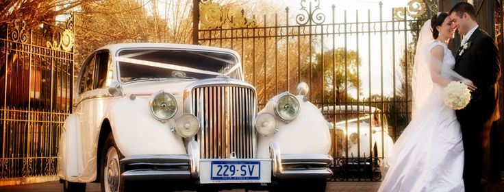 Classic Jags Gallery - Classic Jags Adelaide for Elegance and luxury wedding cars