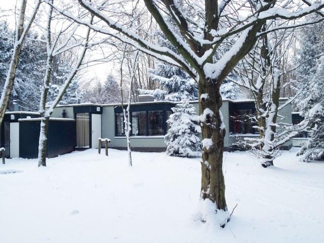 """Ik had me voorgenomen om een alomvattende column te schrijven over het meest bizarre festival weekend van Nederland: Bungalup. Maar bij nader inzien vraag ik me af hoe je zoiets krankzinnigs in vredesnaam kan samenvatten.    """"Het begon allemaal op een winterse vrijdagmiddag, ergens in Het Bos. Een dik pak sneeuw bedekte de daken van de bungalows, de bomen en de meertjes. Een oase aan rust voerde de toon. Hier zouden wij de aankomende dagen ons eigen verhaal gaan schrijven…. Bungalow 833″…"""