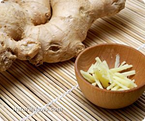 Ginger is definitely your friend when it comes to health matters - especially PAIN, managing blood sugar levels. Also for irritable bowel (IBS) loss of appetite, chills, cold, flu, poor circulation, menstrual cramps, bloating, heartburn, flatulence, indigestion and gastrointestinal problems such as gas and stomach cramps