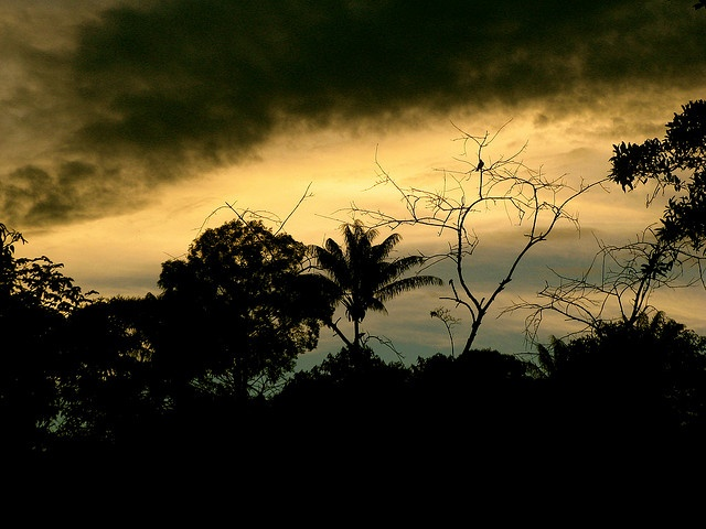 #Caqueta #Colombia #Sunset Atardecer Caquetá by andrea_descans, via Flickr