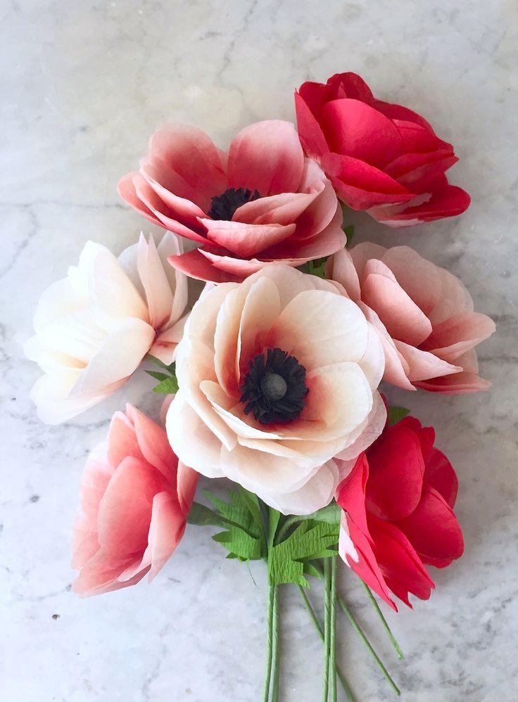 Anemone | Suzonne Stirling.jpg