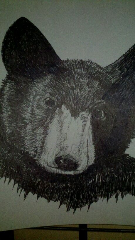 My pen n ink bear