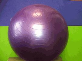 55 cm Anti-Burst Stability Exercise Ball http://www.sunshineyoga.com/fitness-stability-exercise-balls-55.html