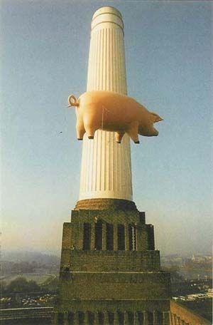 Pigs, Pink Floyd