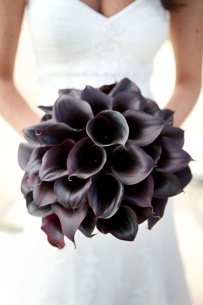 Calla Lilly Bouquet - love the contrast! Dark flowers held next to white dress!! so unique. I think I love this.