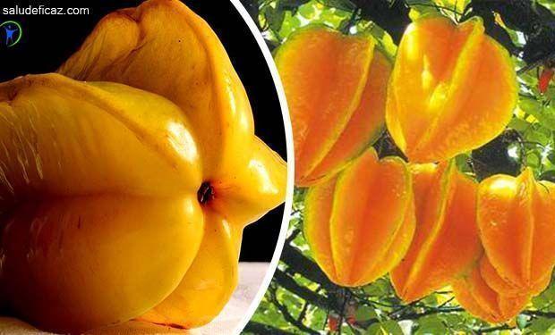 Hoy te hablaremos de una fruta exótica y muy cotizada en el mercado mundial. Descubre las propiedades y beneficios de la fruta carambola.