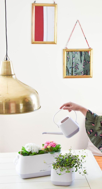 die besten 25 bew sserungssystem ideen auf pinterest. Black Bedroom Furniture Sets. Home Design Ideas