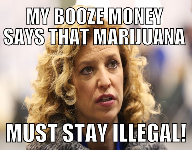 Debbie Wasserman Shultz Gets Paid by Big Booze to Keep Pot Illegal