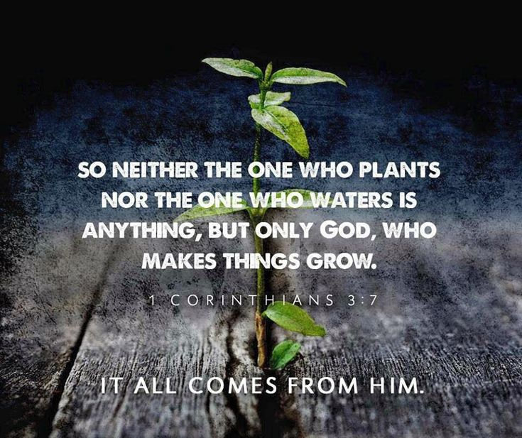 It all comes from Him.So neither the one who plants, nor the one who waters is anything, but only God who makes things grow.  1 Corinthians 3:7