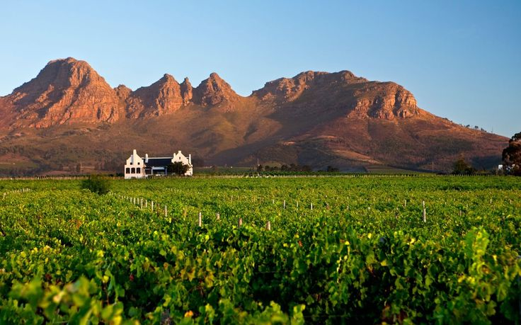 Stellenbosch Wine Route, Stellenbosch, South Africa: Everyone comes back from South Africa's premier wine area raving about its beauty, starting with the towering mountains that define the landscape. Centered on the university town of Stellenbosch, it's also less than an hour from Cape Town, making the travel as easy (or easier) than going to Napa from San Francisco.