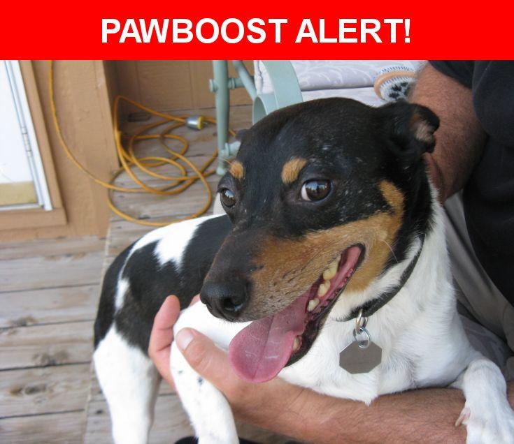 Please spread the word! Zander was last seen in Gardner, KS 66030.    Nearest Address: Near N Locust St & W Fountain Cir