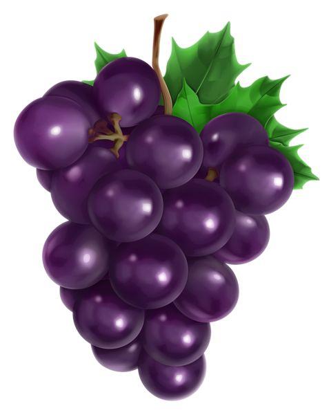 Transparent Grape PNG Clipart Picture