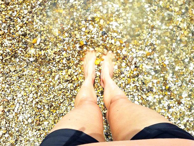 Kagylókkal teli sóderzátony a Dunán (Helemba-sziget után) <3