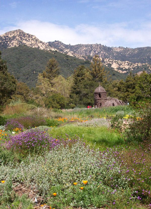 Located on 65 acres in the foothills just above the city, the Santa Barbara Botanic Garden features exquisite exhibits of California native plants displayed in beautiful landscaped settings.