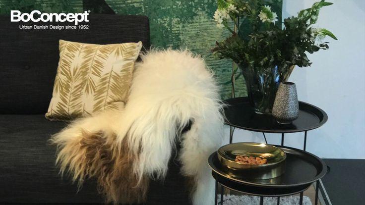 Stockholm sofa bed interior styling by BoConcept Sydney