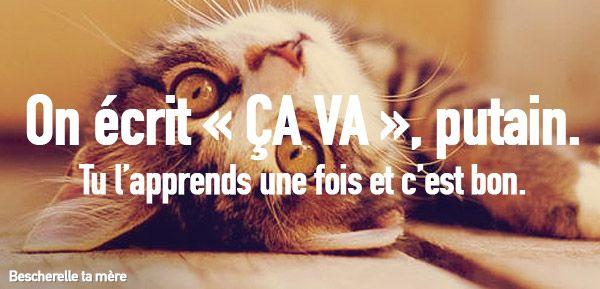 Bescherelle ta mère : ou comment apprendre le français, mais avec des chatons