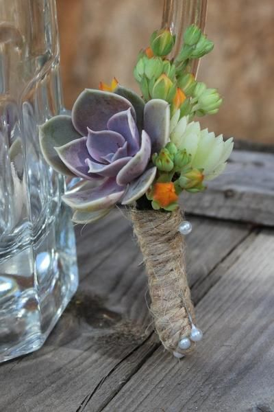 "Boutonniere Cutting - 1.5"" bulk wholesale succulent prices at the succulent source - 4"