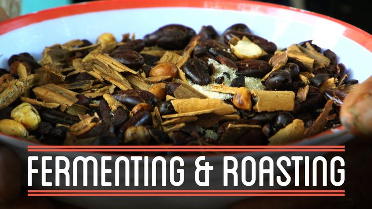 Fermenting & Roasting | How to Make Everything: Chocolate Bar