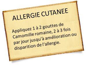 allergie cutanee camomille romaine Allergie cutanée : Des recettes simples avec les huiles essentielles
