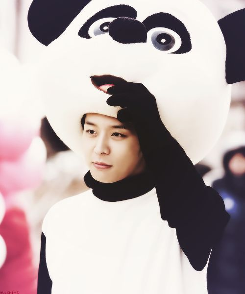 Yoochun! In a panda costume! ♡ #jyj #rooftopprince