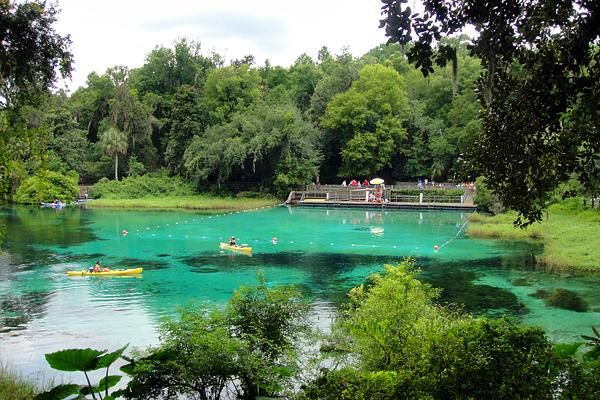 Rainbow Springs State Park, SW of Ocala  Beautiful gardens and waterfalls and of course the cool springs for a dip