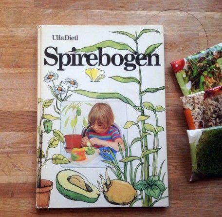 Spirebogen fra 1982