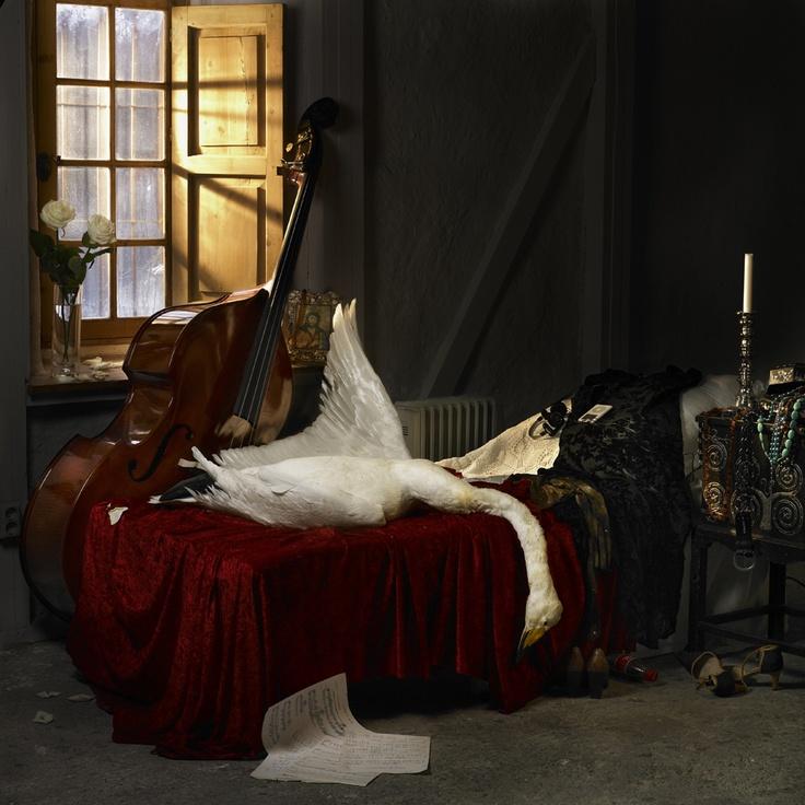 Leda the Swan, the Still Life Series.